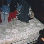 exhibit-avery-bed-3-2